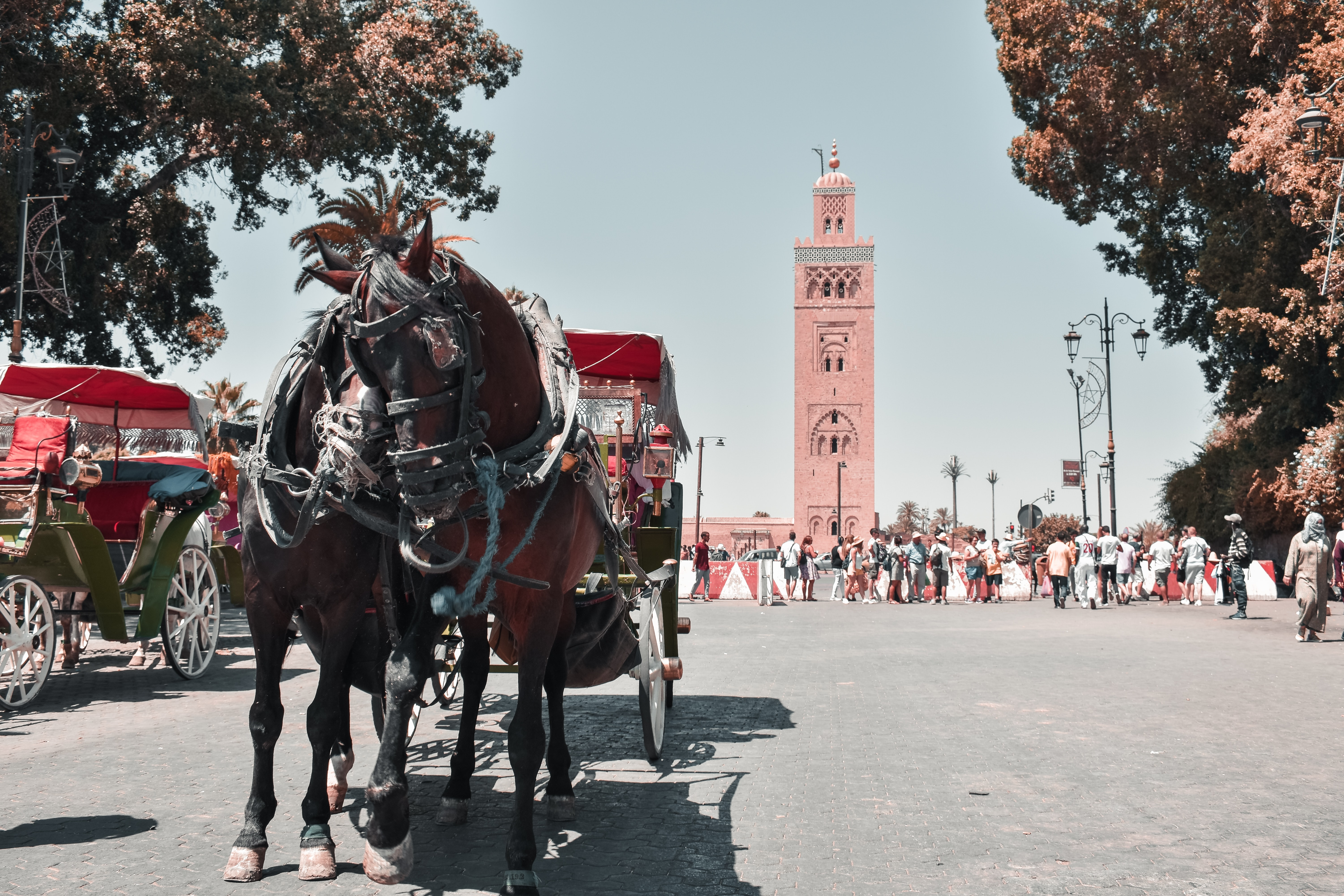 Is it safe to live in Morocco?